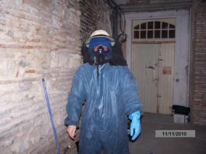 Intervention le 11 novembre 2010 Passage d'Agen nid de frelon