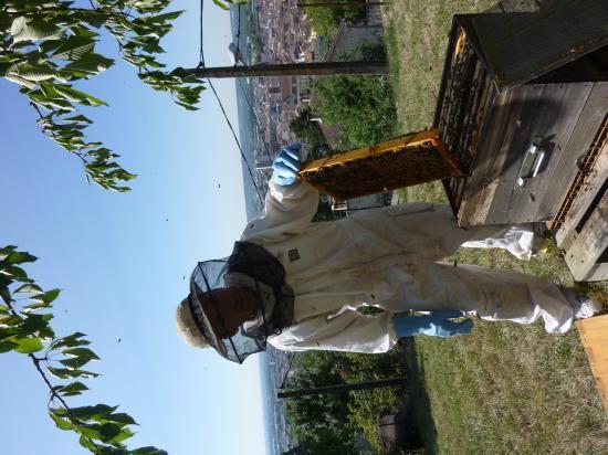 Prise de vue entre apiculteur et la ruche.